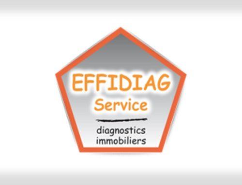 EFFIDIAG-SERVICE